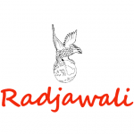 Toko Radjawali Festival Indonesie 2021 City of Cultures Wageningen